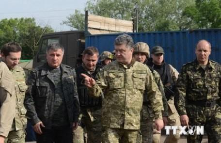Russland kritisiert Friedensplan des ukrainischen Präsidenten - ảnh 1
