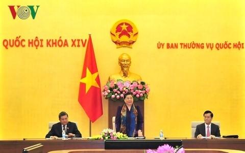 Vize-Parlamentspräsidentin Tong Thi Phong leitet die Präsentation der Organisationsabteilung von APP - ảnh 1