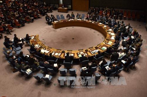 UNO fordert die Parteien in Libyen zum Gewalt-Stopp auf - ảnh 1