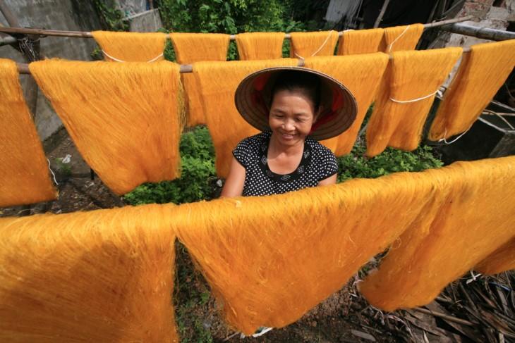 Die Schönheit bei der Arbeit der vietnamesischen Frauen - ảnh 4