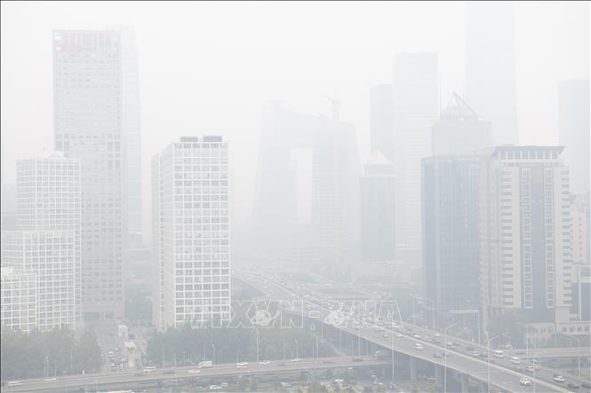 Erste globale Konferenz über Luftverschmutzung in der Schweiz eröffnet - ảnh 1