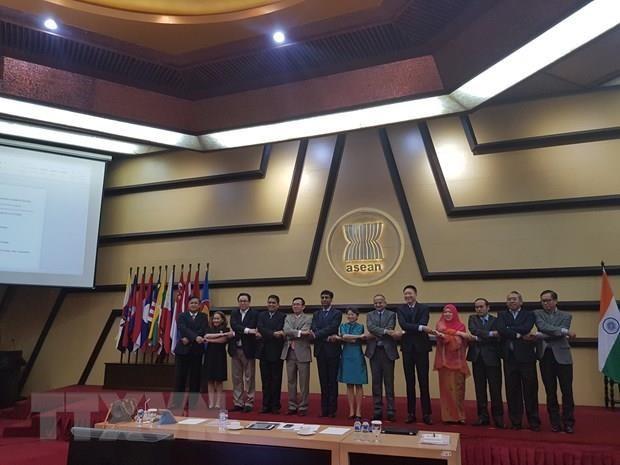 Indien und ASEAN verstärken maritime Zusammenarbeit  - ảnh 1