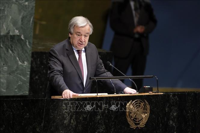 """Vietnam verpflichtet sich zum Ziel """"Niemand wird zurückgelassen"""" auf der Konferenz über UN-Behindertenrechtskonvention - ảnh 1"""