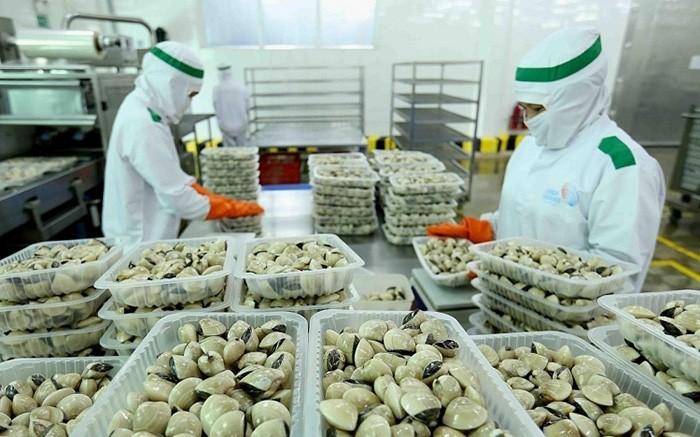 Vietnam exportiert zusätzlich drei neue Sorten von Meeresfrüchten nach China - ảnh 1