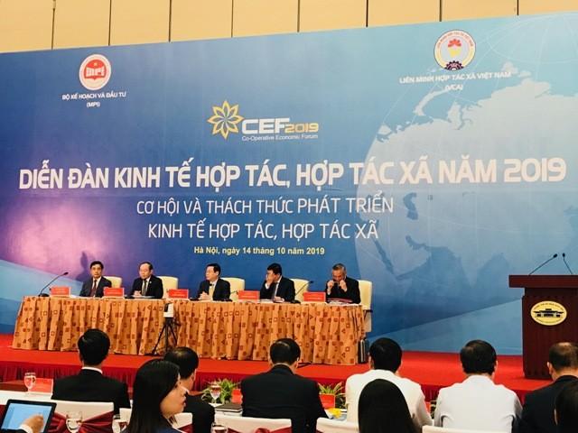 Chancen und Herausforderungen in der Entwicklung der Genossenschaftswirtschaft in Vietnam - ảnh 1