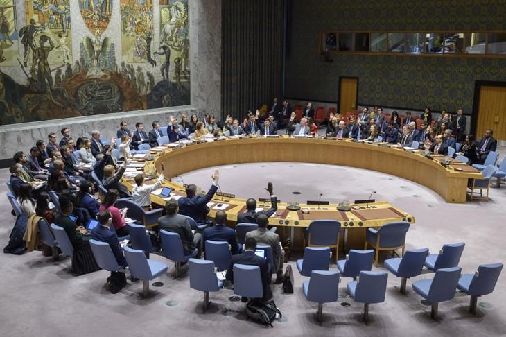 UN-Sicherheitsrat verlängert Mission im Jemen und diskutiert die Lage in Kolumbien - ảnh 1