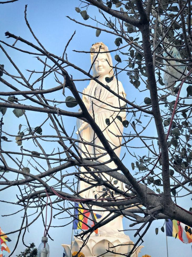 Die friedliche und alte Schönheit der Kaiserstadt Hue - ảnh 13