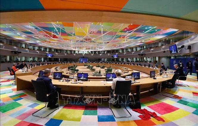 EU hält wegen der Covid-19-Pandemie virtuellen Gipfel ab - ảnh 1
