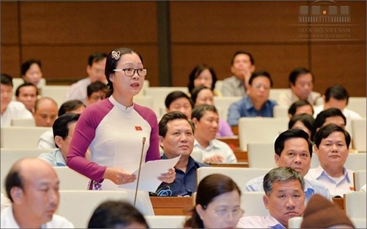 Ausbildung von jungen Parlamentariern - ảnh 1