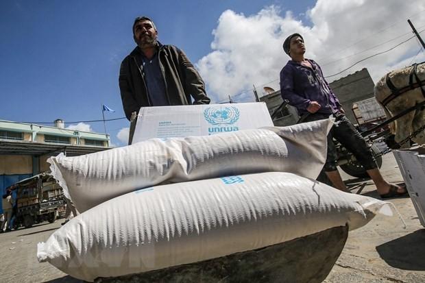 Arabische Liga begrüßt die Wiederaufnahme der Hilfe für Palästina durch die USA - ảnh 1