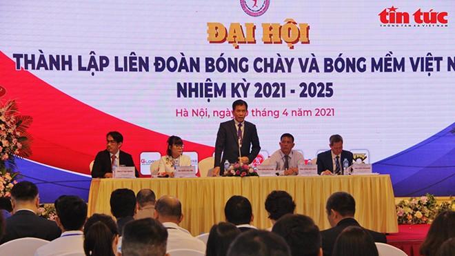 Gründung des vietnamesischen Baseball- und Softballverbands - ảnh 1