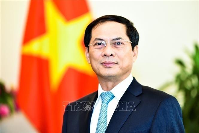 Außenminister Bui Thanh Son gibt Interview über die Ergebnisse der Auslandsreise des Staatspräsidenten  - ảnh 1