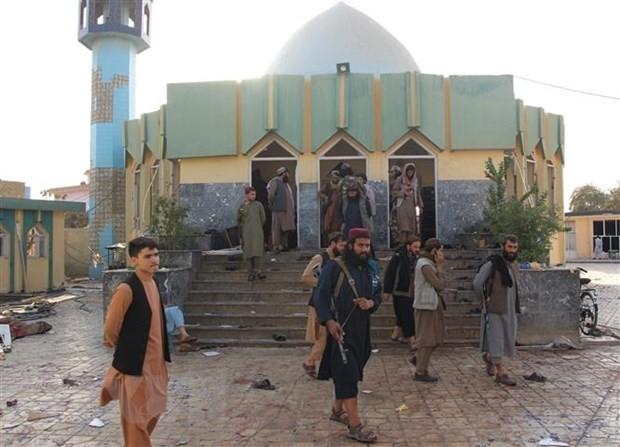 Die USA bekräftigen erneut ihren Standpunkt zur Beurteilung der Taliban auf der Grundlage tatsächlicher Handlungen - ảnh 1
