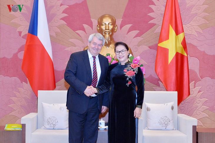 응우옌 티 낌 응언 국회의장, 체코 공화국 하원부주석 회견 - ảnh 1