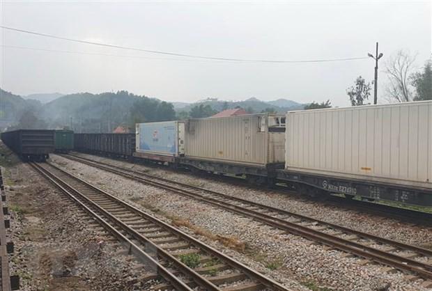 동당 국제철도역에 460톤의 농산물 수출 - ảnh 1