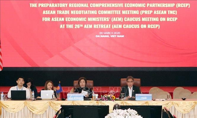 아세안 역내포괄적경제동반자협정에 대한 무역협상위원회 회의 - ảnh 1