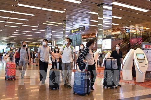 싱가포르 입국 관련 검역 - ảnh 1