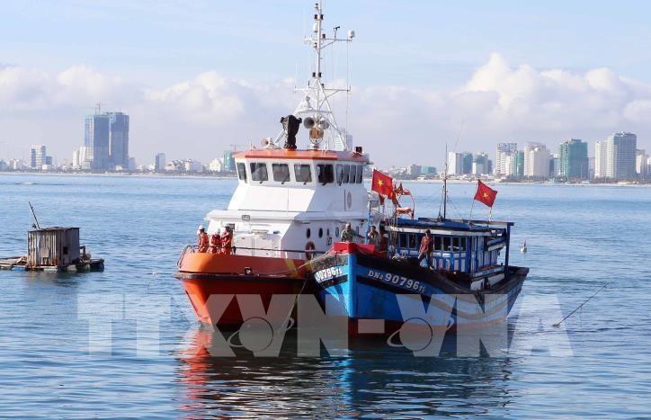 코로나19: 베트남 항해국, 많은 기업 배려 조치 시행 - ảnh 1
