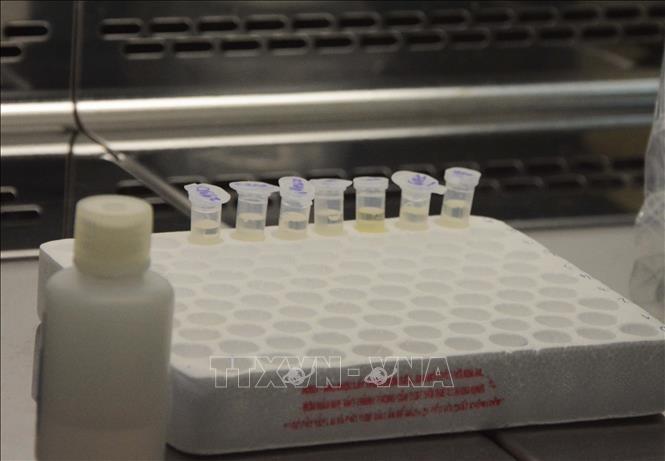 4월 16일부터 코로나19 방역 의약품 수출 일시 중단 - ảnh 1