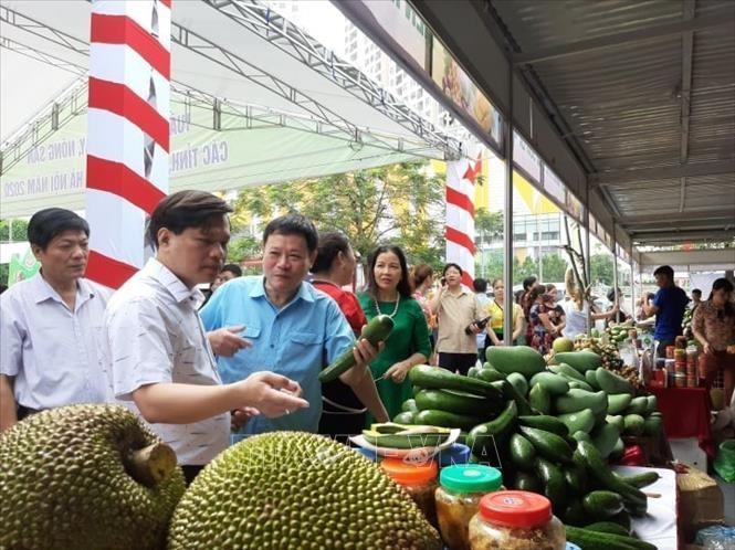 하노이에서 과일-농산물 주간 개최 - ảnh 1