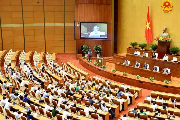 국회, 국제협상법 및 개정 재외 계약 근로자법 논의 - ảnh 1