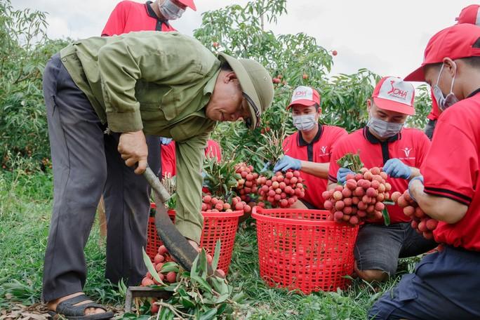 베트남 농민, 세계 각국에 대한 농산물 수출에 대해 기쁘게 생각 - ảnh 2