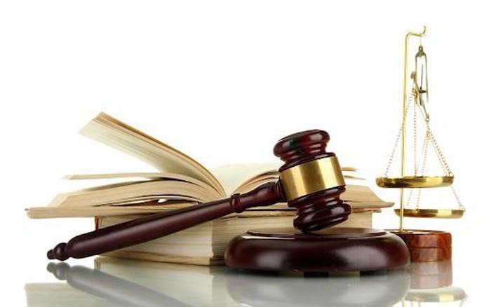 해외 증거 수집에 관한 헤이그 협약 이행 계획 승인 - ảnh 1