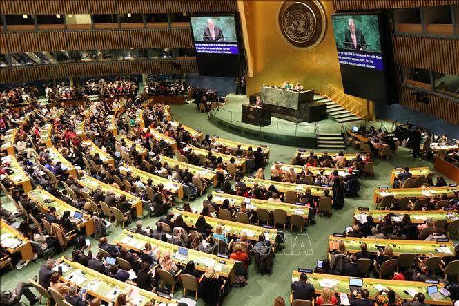 베트남, 주어진 목표, 요구,  방침을 충족, 유엔 안보리의 활동에 적극적 주도적 기여 - ảnh 1