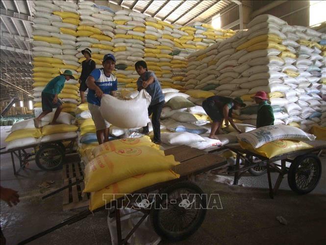 6개월간, 쌀 수출 약 18% 증가 - ảnh 1