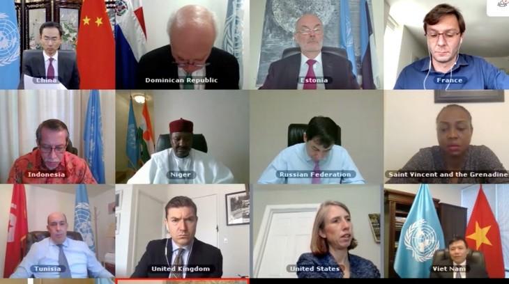 베트남 – 유엔 안보리, 서아프라카 및 사헬 지역 문제에 대한 온라인 토론 - ảnh 1