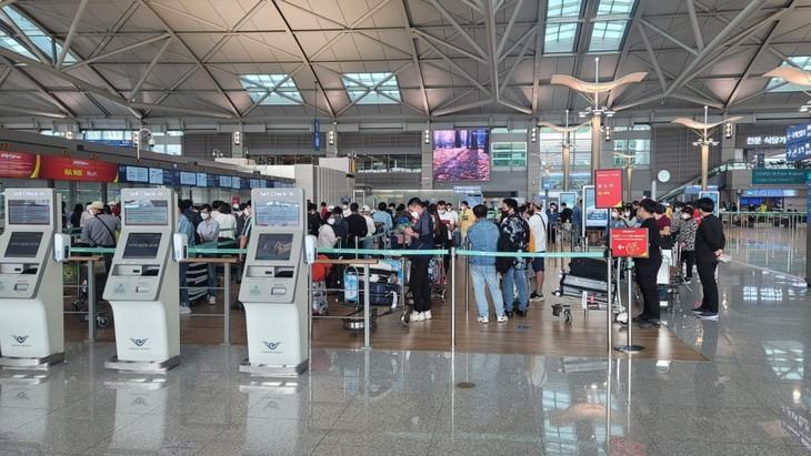 한국서 베트남 국민 250명 귀국 지원 - ảnh 1