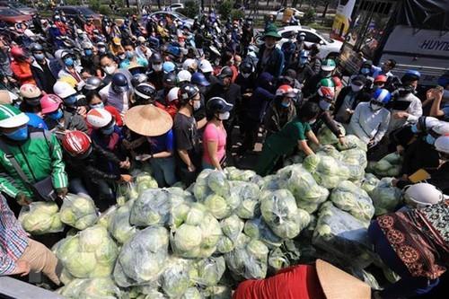 하노이 유통 시스템, 하이즈엉성 농산물 소비에 노력 - ảnh 1