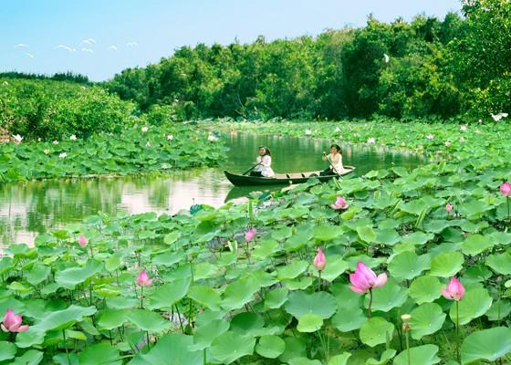 동탑성, 520 만 방문객 유치목표 - ảnh 1