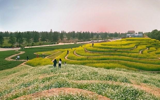 하노이, 단프엉현 2곳 관광지 발표 - ảnh 1