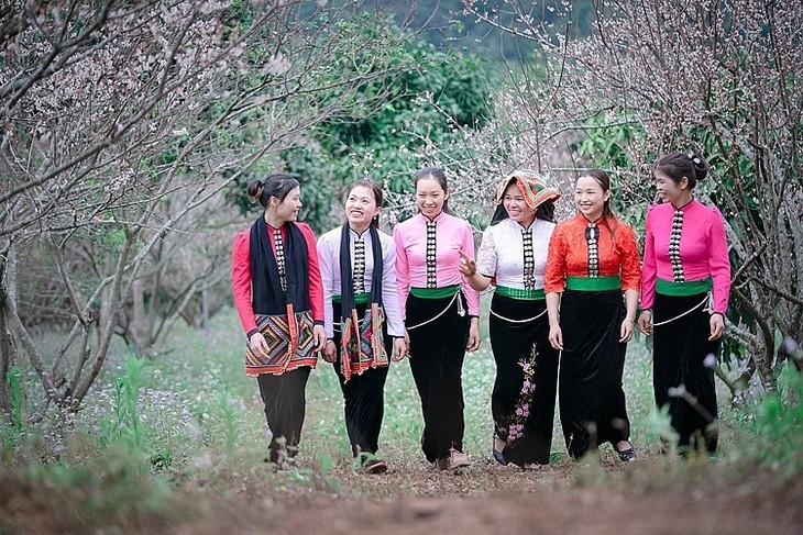 선라 (Sơn La)성 목쩌우 (Mộc Châu) 국가관광지구 - ảnh 2