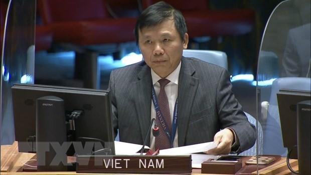 베트남, 콩고민주공화국 및 골란고원 정세 관련 안보리 회의 참석 - ảnh 1