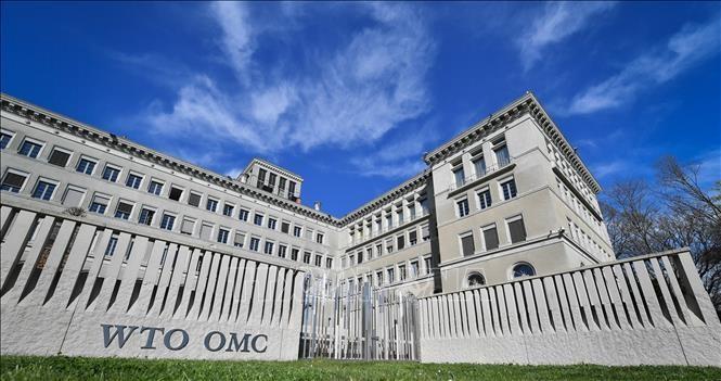 WTO កំណែទម្រង់ដើម្បីឆ្លើយតបនឹងស្ថានភាពថ្មី - ảnh 1