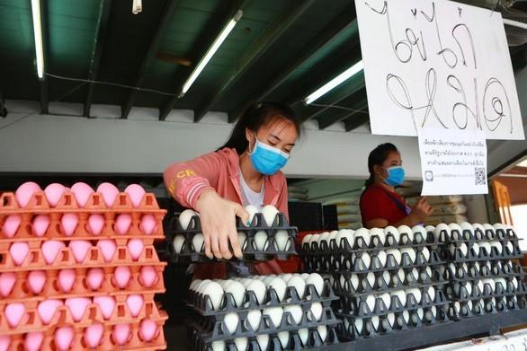 Komunitas badan usaha Thailand berseru supaya melonggarkan langkah-langkah blokade - ảnh 1
