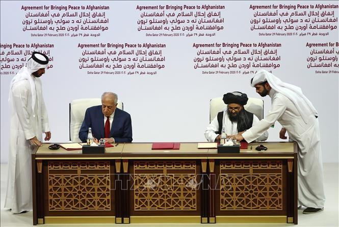 Pakistan berseru supaya melaksanakan permufakatan perdamaian AS-Taliban - ảnh 1