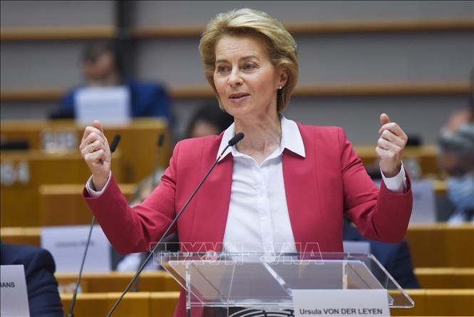 Uni Eropa menggalang dana baru untuk mencegah dan memberantas wabah Covid-19 - ảnh 1