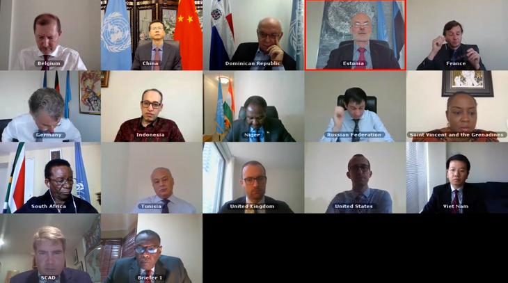 DK PBB melakukan perbahasan tentang aktivitas komisi-komisi yang bersangkutan dengan situasi Sudan dan Somalia - ảnh 1