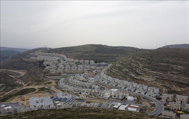 Liga Arab mengutuk rencana penggabungan Tepi Barat yang dilakukan Israel - ảnh 1