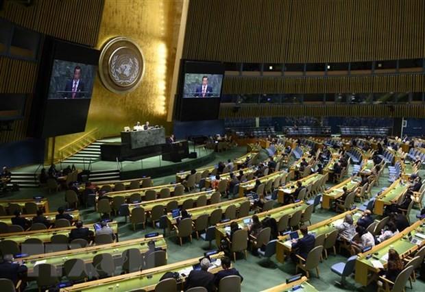 MU PBB membuat rencana memilih 5 anggota tidak tetap DK PBB baru - ảnh 1