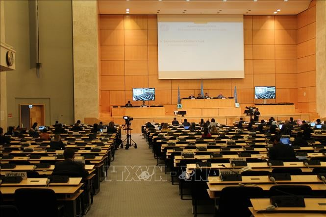 Persidangan ke-43 Dewan HAM PBB diadakan kembali - ảnh 1