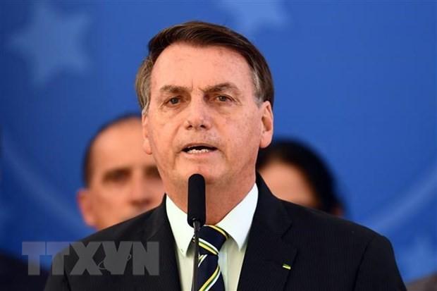Presiden J.Bolsonaro: Cara manajemen yang dilakukan Vietnam merupakan model untuk dipelajari Brasil - ảnh 1