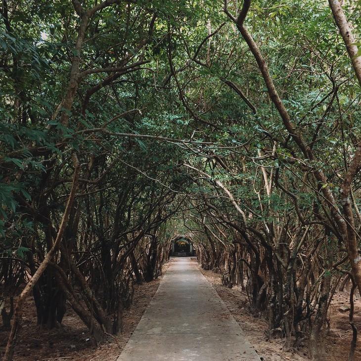 Terharu atas keindahan yang tenteram dan klasik dari Ibukota kuno Hue - ảnh 8