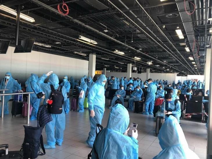 Vietnam akan menyambut lebih dari 300 warga negara Vietnam di Australia yang kembali ke Tanah Air - ảnh 1