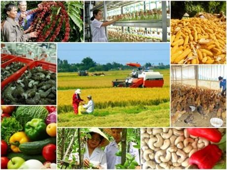 Peluang dan tantangan yang dihadapi pertanian Vietnam dalam EVFTA - ảnh 1