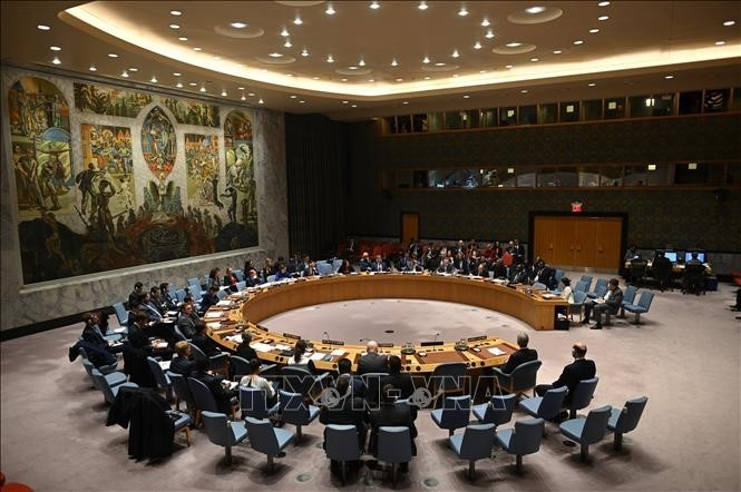 DK PBB mengadakan sidang langsung yang pertama setelah masa 4 bulan - ảnh 1