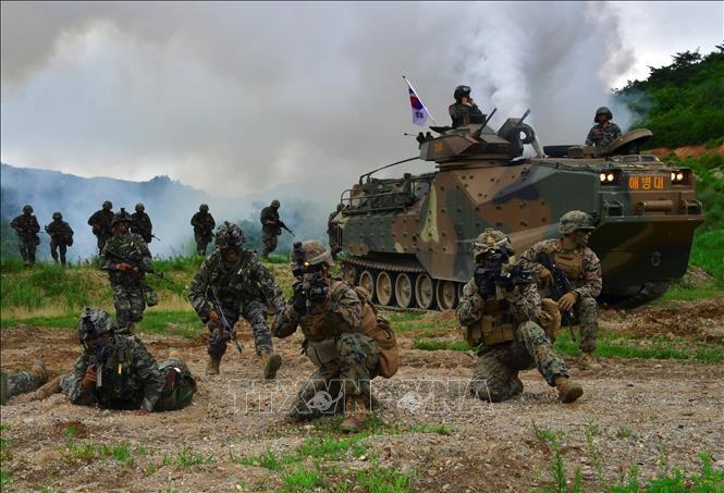 Republik Korea dan AS mengumumkan rencana latihan perang gabungan - ảnh 1